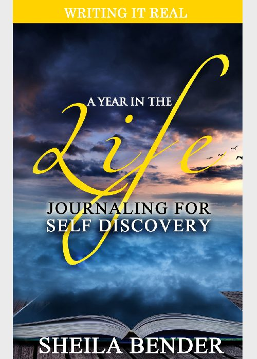 A Year in the Life by Sheila Bende